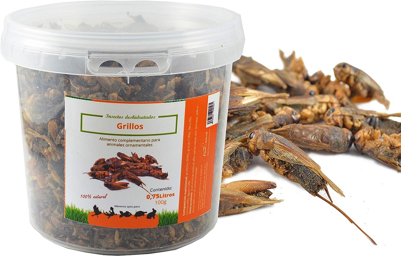 FINCA CASAREJO Grillos. Insectos Secos para alimentación de gallinas, Patos, Aves de Corral (200)