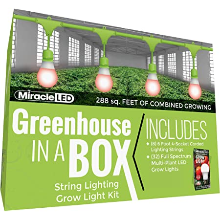 Miracle LED Greenhouse in a Box Daylight Plus Grow Kit for Indoor Plants - Includes 32 Absolute Daylight Plus Red 150W Replacement Grow Light Bulbs & 8 4-Socket Corded Light Fixture
