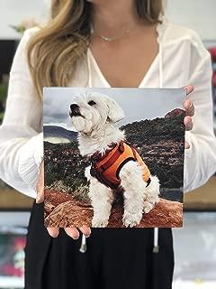 big size photo print