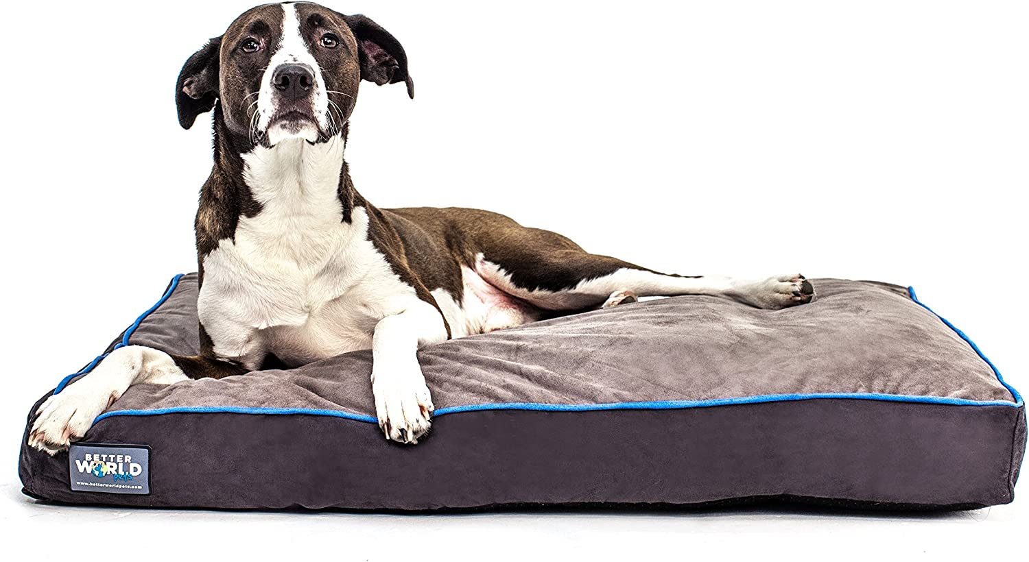 FirstQuality Orthopedic Dog Bed  Pure Premium Shredded Memory Foam Ideal for Aging Dogs   Eases Pain of Arthritis & Hip Dysplasia   Waterproof 180 GSM Removable Washable Cover
