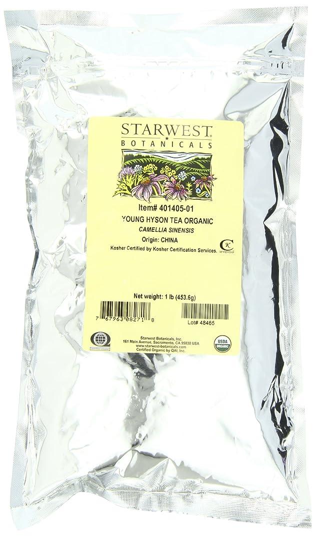 コレクションカーテンビン海外直送品Tea Young Hyson Organic, 1 Lb by Starwest Botanicals