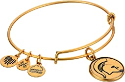 Alex and Ani - Michigan State University