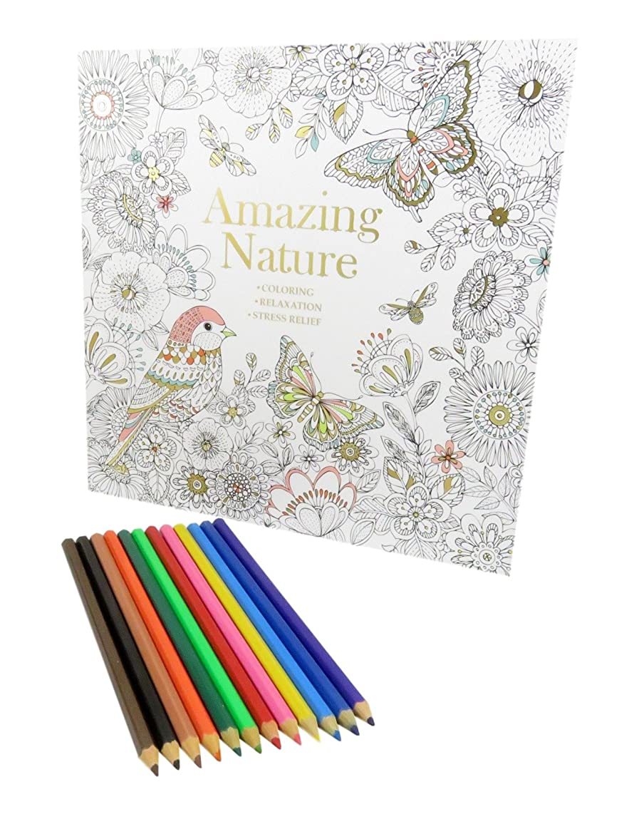 Rainbow Colored Pencil Set Art Tools (12) With Amazing Nature Coloring Book 50 Pages (Bundle of 2)