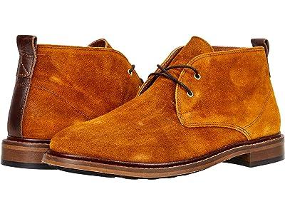 Shoe The Bear Phoenix Ward S