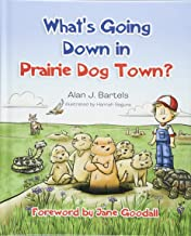 Best a new dog in town Reviews