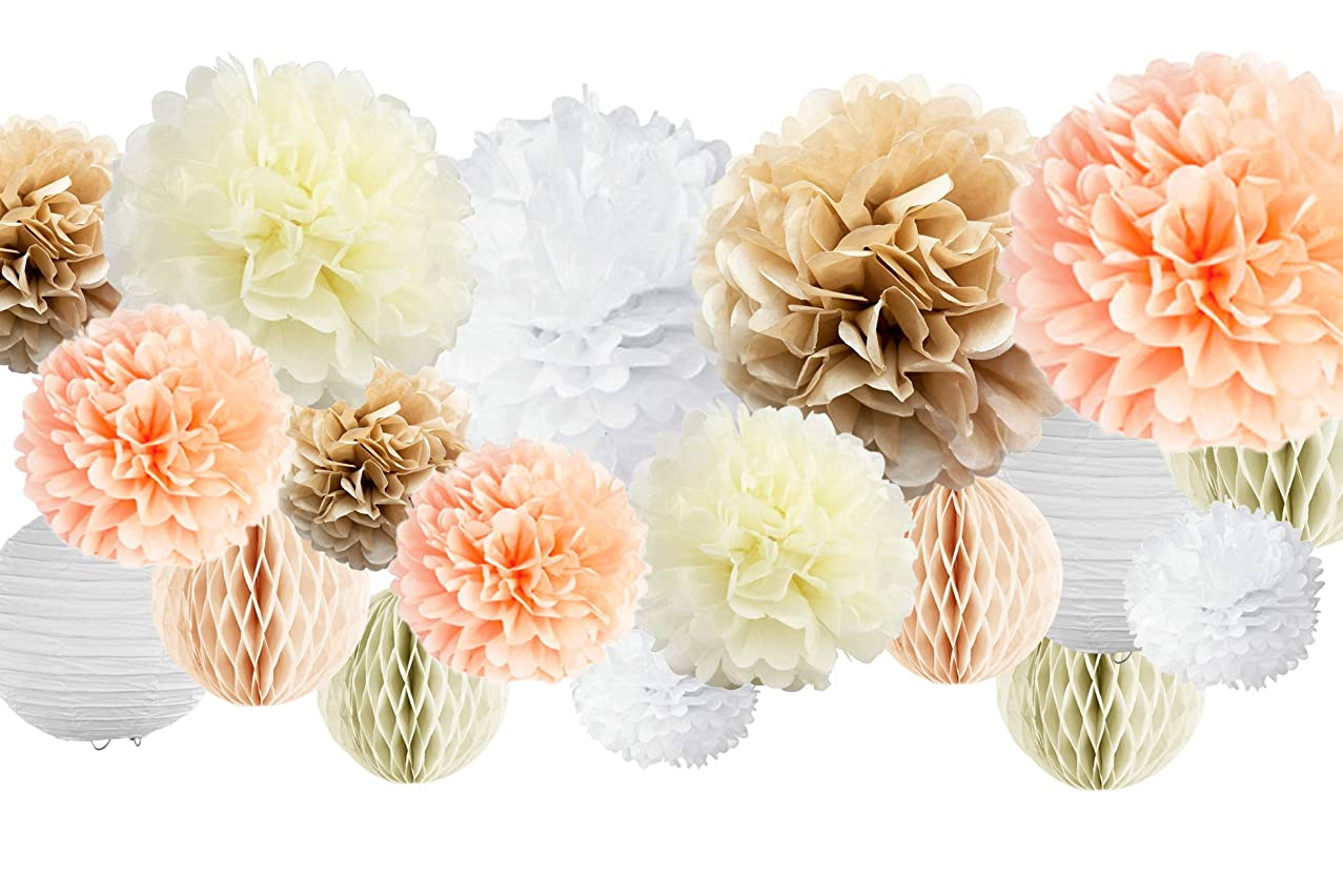30 Pcs Tissue Paper Pom Poms Kit (14