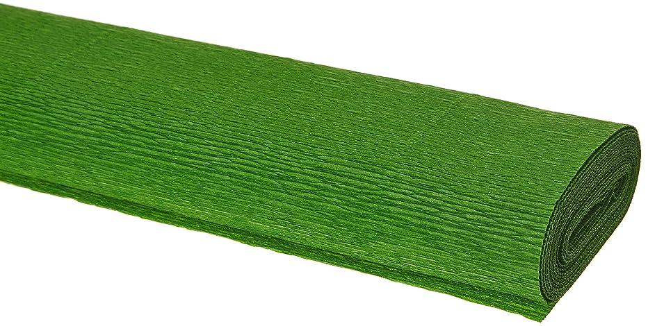 Interdruk BIKW117 Crepe Paper Premium 117 Zielony 200 x 50 cm, Multi-Color