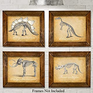 Original Dinosaurs Art Prints - Set of Four Photos (8x10) Unframed - Makes a Great Gift Under $20 for Boy's Room Decor