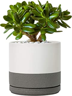 6 Inch Matte White & Grey Ceramic Planter Pot with Saucer/Ceramic Tray, Drainage Hole and Drainage Mesh Net, Round Planter Pot for Flower and Plants, Indoor or Outdoor
