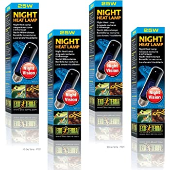 Exo Terra Night-Glo Moonlight Lamp, 25-Watt (4 Pack)