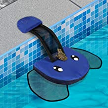 pet ramp for swimming pool