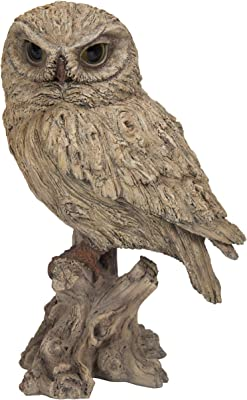 Amazon Com Hi Line Gift Ltd Eagle Owl On Branch With Wings Out Statue Home Kitchen
