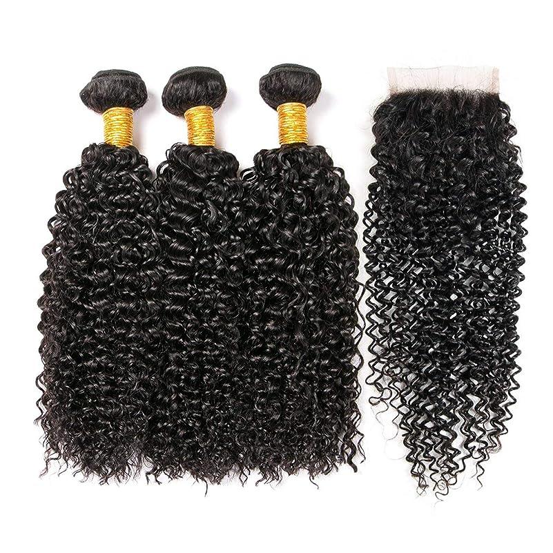 かつらかつら延長カーリー人間の髪のクロージャブラジルのその他の特徴カーリーヘアの束
