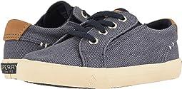 6589140dba6c Boy's Sperry Kids Shoes + FREE SHIPPING | Zappos.com