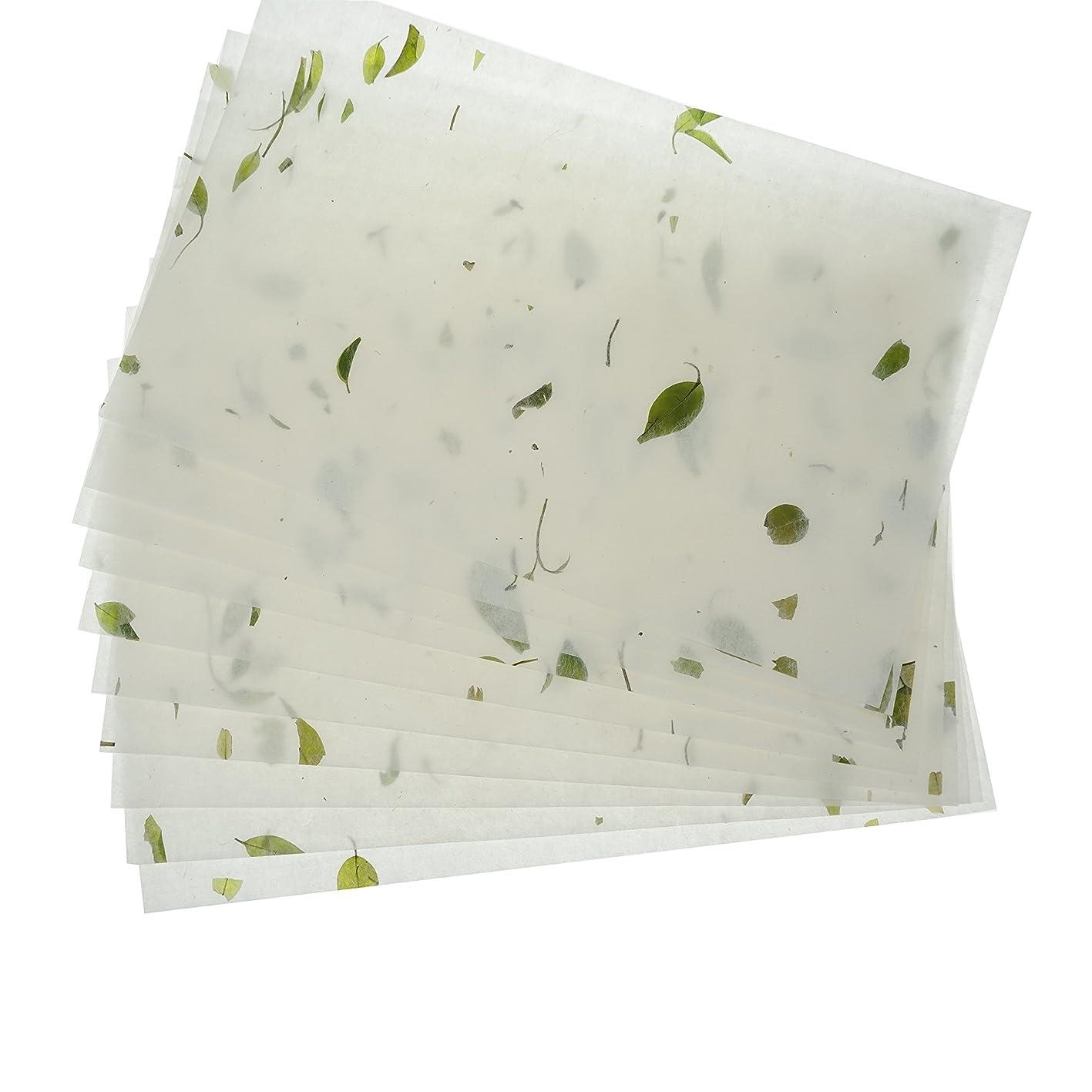 Bilipala Natural Plant Handmade Xuan Paper Rice Paper Letter Paper Writing Paper xwapvrafrjg031