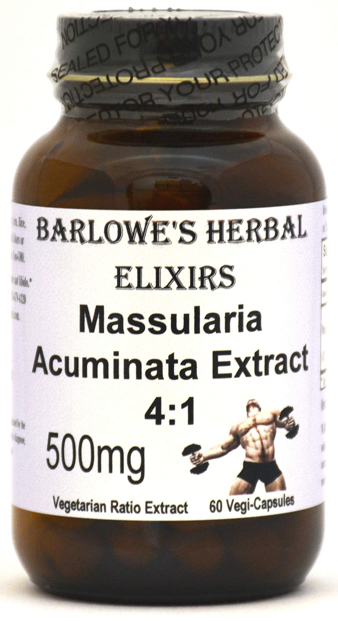 Massularia Acuminata Extract 4:1 - 60 500mg VegiCaps - Stearate Free, Bottled in Glass!
