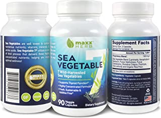 Maxx Herb Sea Vegetable 7 - Natural Iodine Supplement for Thyroid Support (90 Veggie Capsules, 1 Month Supply) - All Natural Seaweed and Kelp Vegan Capsules