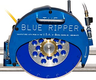 Best blue ripper saw Reviews
