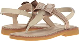 Elephantito - Lido Sandal (Toddler/Little Kid/Big Kid)
