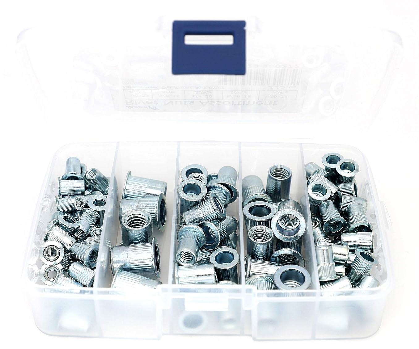 iExcell 115 Pcs #8-32#10-24 1/4-20 5/16-18 3/8-16 Carbon Steel UNC Rivet Nuts Kit, Blue White Zinc Plated Finish, Flat Head