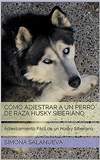 Cómo Adiestrar a Un Perro de Raza Husky Siberiano  : Adiestramiento Fácil de un Husky Siberiano