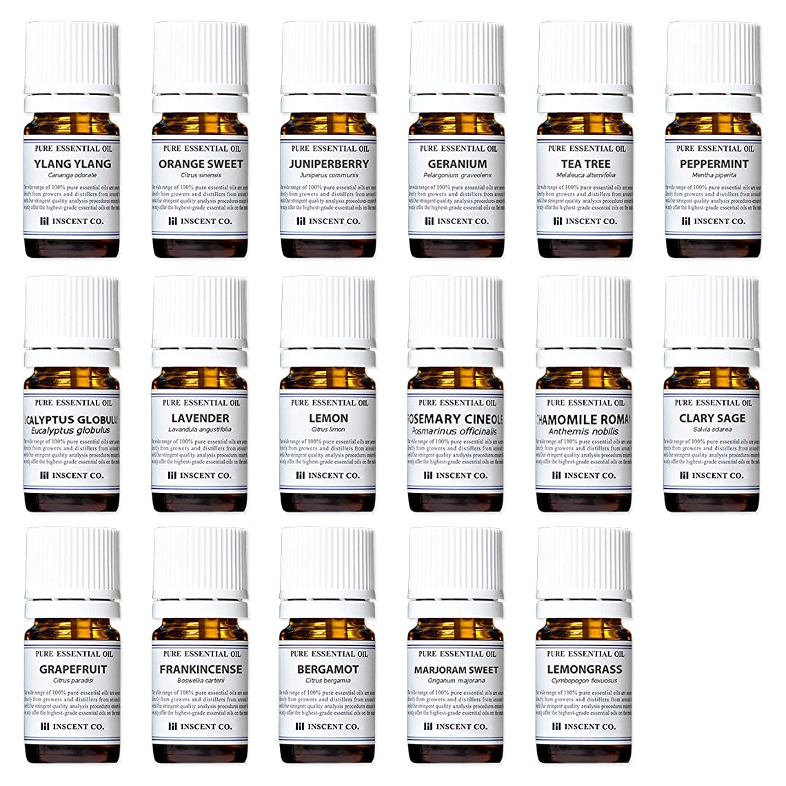 軍隊地球コメントアロマテラピー検定香りテスト対応17種セット エッセンシャルオイル 精油 AEAJ インセント