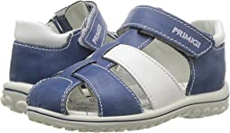 Primigi Kids - PSW 13613 (Infant/Toddler)