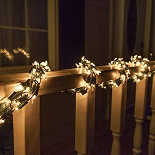 Best garland and lights Reviews
