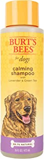 Sponsored Ad - Burt's Bees for Pets for Dogs Natural Calming Shampoo with Lavender and Green Tea