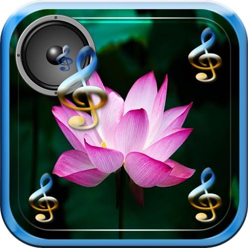 Musique pour Zen Relax