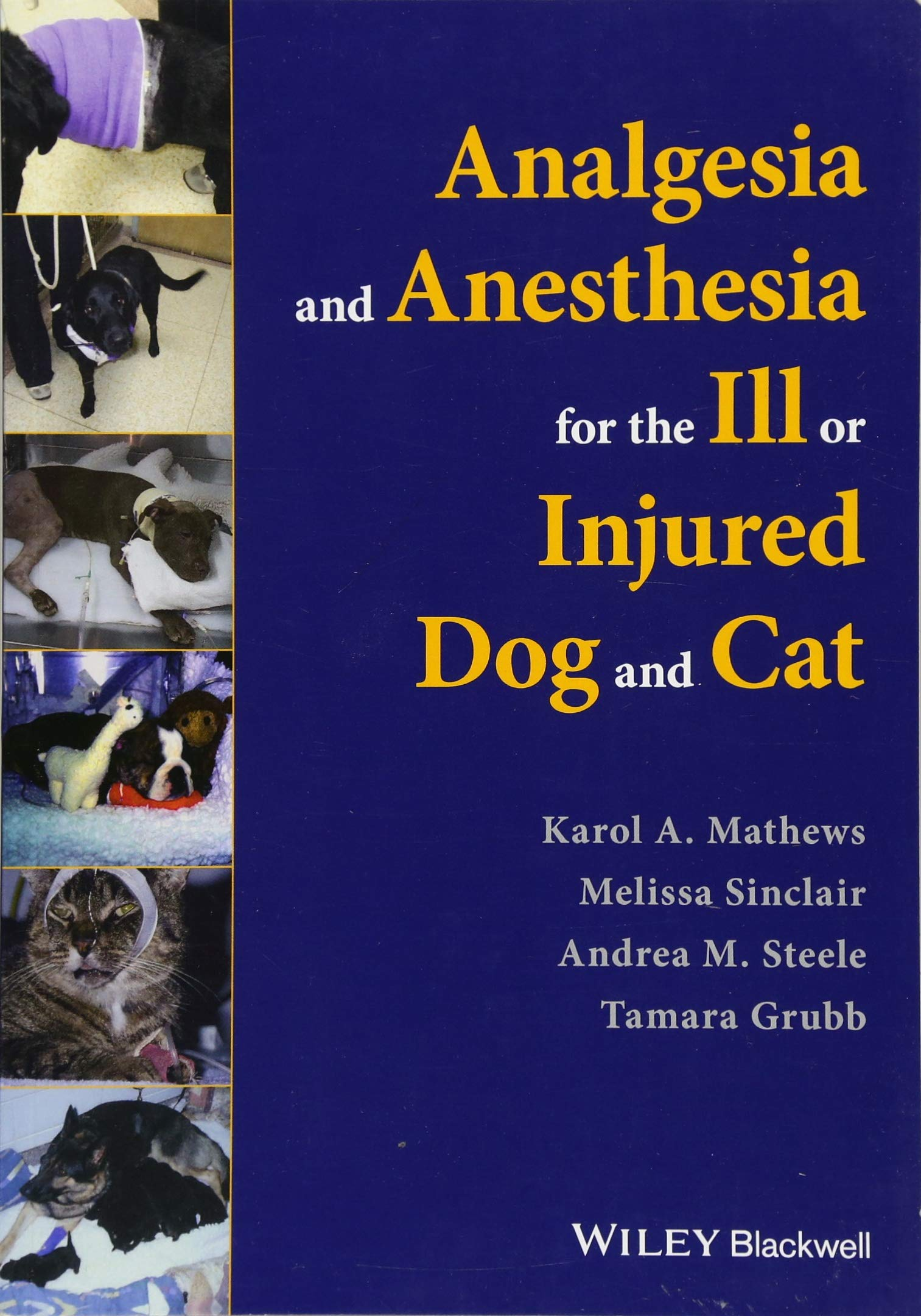 Image OfAnalgesia And Anesthesia For The Ill Or Injured Dog And Cat