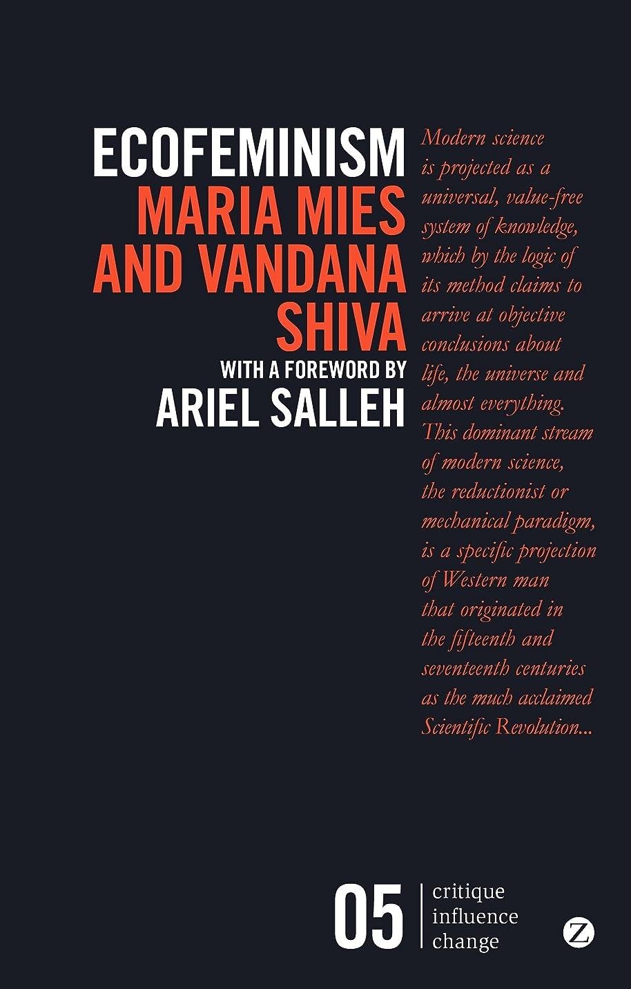 腸ロック解除リレーEcofeminism (Critique Influence Change) (English Edition)