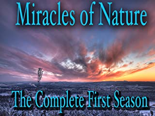 Miracles of Nature - The Complete First Season