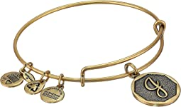 Alex and Ani Initial J Charm Bangle