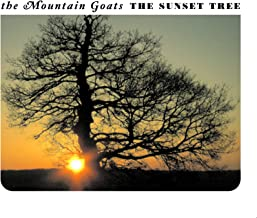 Best the sunset tree Reviews