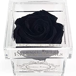 A 100% Real Rose That Lasts A Year - The Perfect Unique Gift for Women and Men, an Anniversary Gift, A Birthday Gift - Whi...