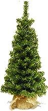 18 Inch Vienna Slim Pine Tree in Burlap Wrapped Base - Tabletop Christmas Pine Tree