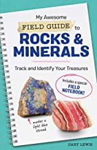Best rocks minerals and gems book scholastic Reviews