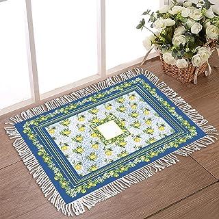 """Doormat for Outdoor Entrance 20""""x31.5"""" Non Slip Tassel Front Door Rugs for Indoor Moroccan Pattern Low Profile Welcome Mat..."""