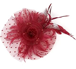 Fascinators Hat Flower Mesh Ribbons Feathers Tea Party Cocktail Headband for Girls and Women