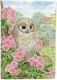 Caroline's Treasures ASA2109GF Tawny Owlet Garden Size Flag, Small, Multicolor