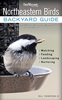Northeastern Birds: Backyard Guide - Watching - Feeding - Landscaping - Nurturing - New York, Rhode Island, Connecticut, M...