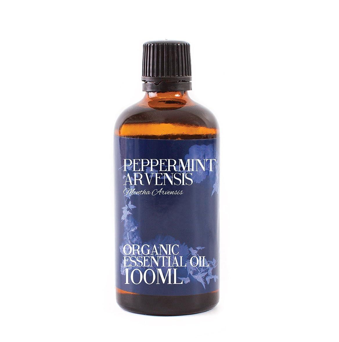 柔らかい足ヘア影響するMystic Moments | Peppermint Arvensis Organic Essential Oil - 100ml - 100% Pure
