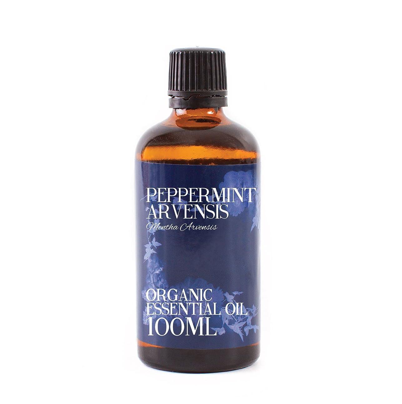 消化抽出財政Mystic Moments | Peppermint Arvensis Organic Essential Oil - 100ml - 100% Pure