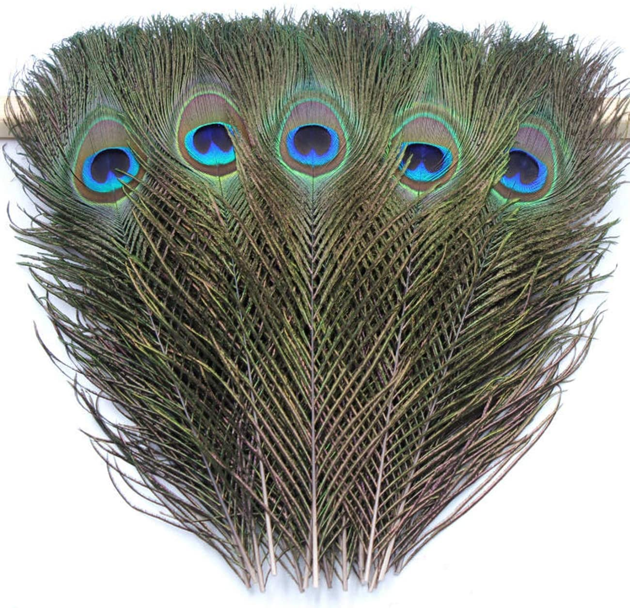 TinaWood Natural Peacock Sale Eye 25% OFF Feathers 9.8-11.8 Craf DIY inch for