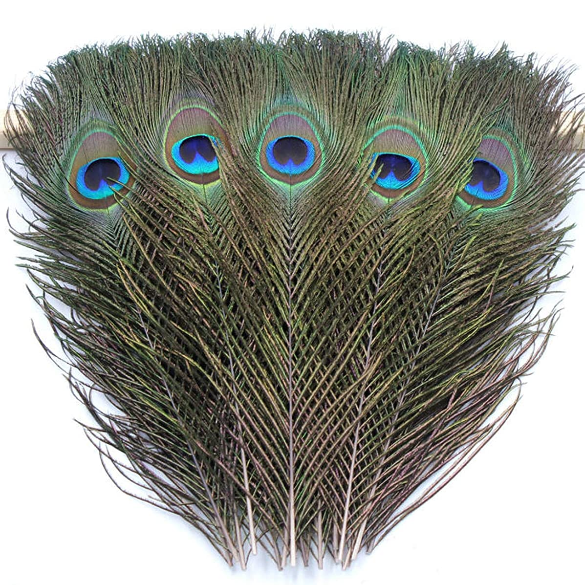TinaWood Real Natural Peacock Eye Feathers 9.8-11.8 inch for DIY Craft, Wedding Holiday Decoration (20)