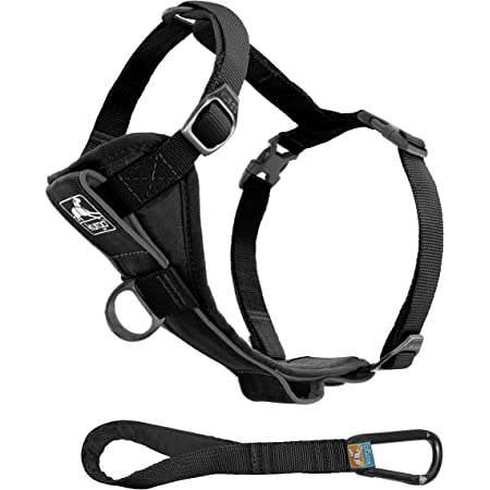Kurgo Tru-Fit Smart Harness, Dog Harness, Pet Walking Harness, Quick Release Buckles, Front D-Ring for No Pull Training, Includes Dog Seat Belt Tether, For Small, Medium, & Large Dogs.