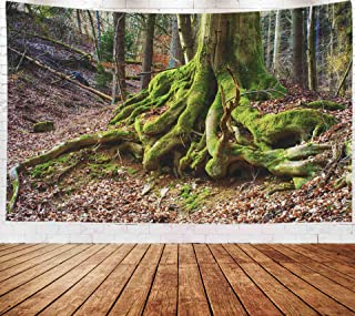 Fantasy Landscape Wall Hanging Tapestry,Art Tapestry,Musesh Tapestries Wall Hanging for Bedroom Living Room Decor Inhouse 80x60 Inches Size Surreal Fairy Tale Fine Art Spooky Fantasy Color Outdoor Ima