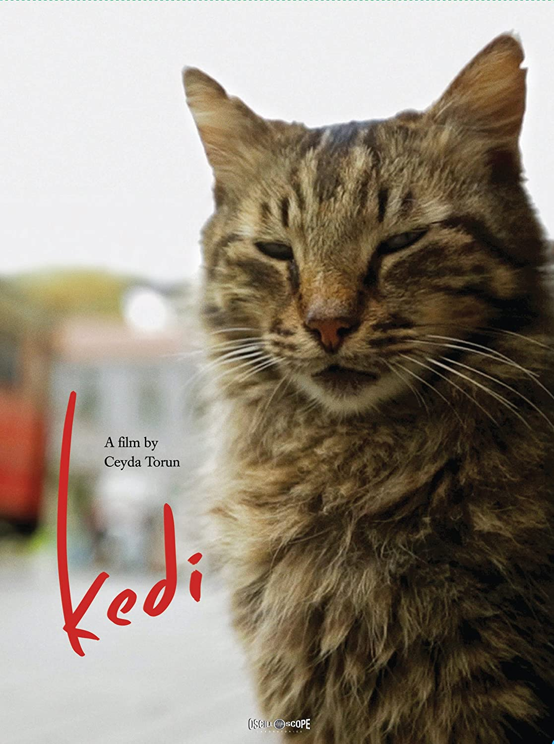 Popular products Kedi Same day shipping