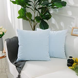 HOME BRILLIANT Cushion Cover for Chair Decor Plush Solid Velvet Supersoft Handmade Decorative Pillowcase, Set of 2, 20x20 Inches(50cm), Light Blue
